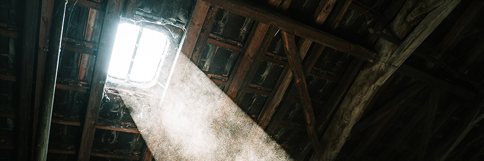 attic with dust